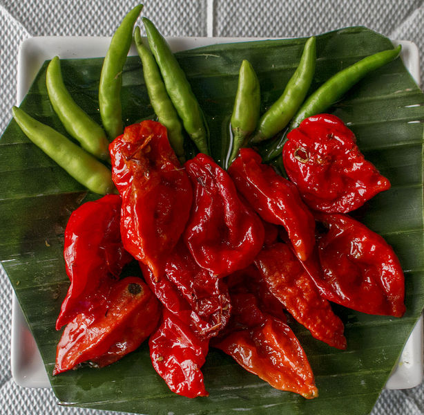 Chili_pepper