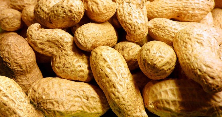 Peanut-1029804_960_720