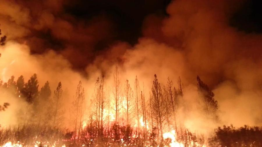 The_rim_fire_in_the_stanislaus_national_forest_near_in_california_began_on_aug._17__2013-0004
