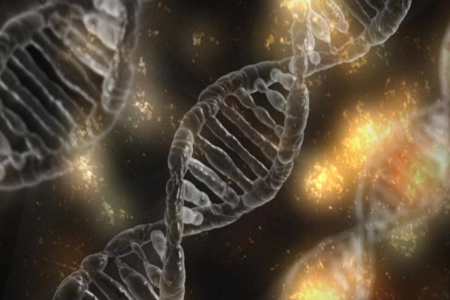 Biochemie_kinesiologie_inwil