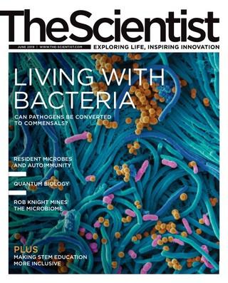 耐受療法大發現:與菌共存 (20190602科學家月刊)