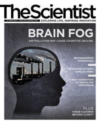 空污可能使認知能力下降(科學家月刊20191001)
