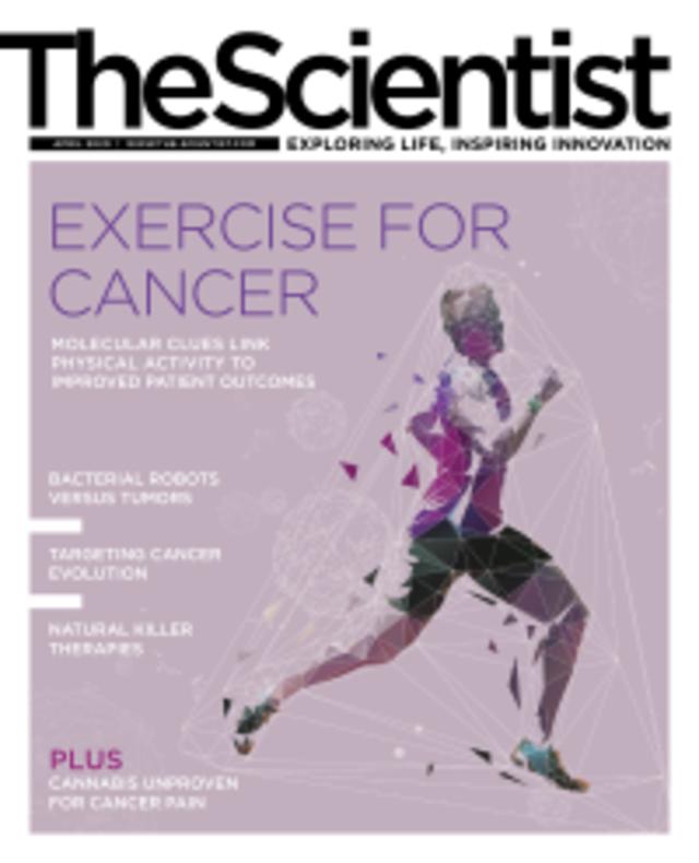 規律運動有助於對抗癌症(科學家20200401)